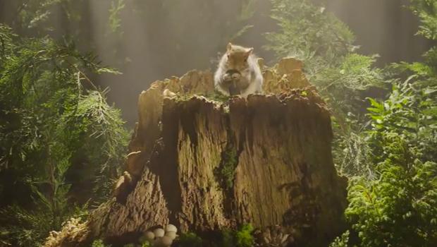 Chromecast creates a squirrel revolution