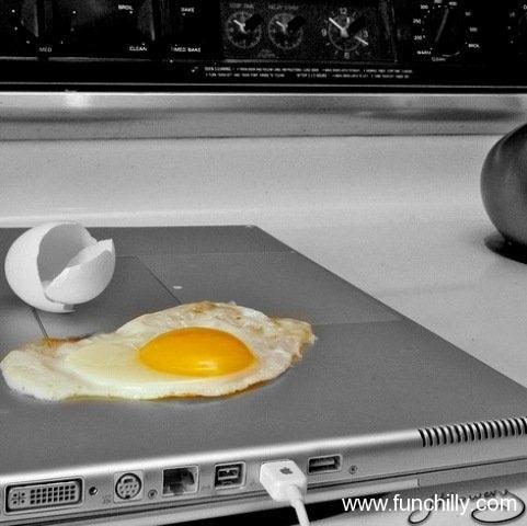 Frying eggs on laptop