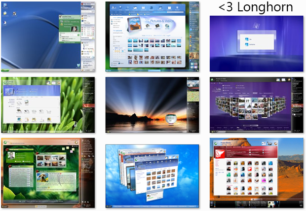 love-longhorn-gallery-intro-image.png
