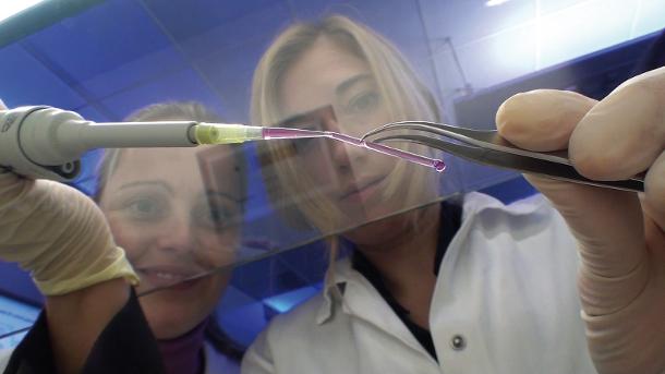 3D printed blood vessels