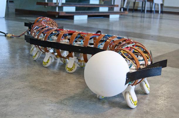 University of Leeds robot worm
