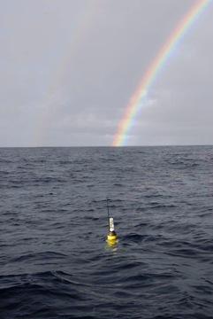 40150929-1-rainbow.jpg