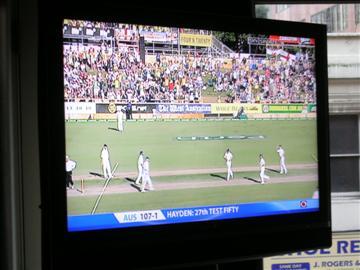 40149785-1-cricket-023-custom.jpg
