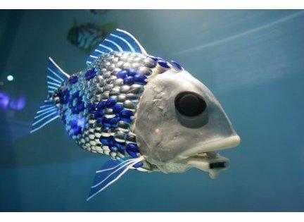 robotfish-4.jpg
