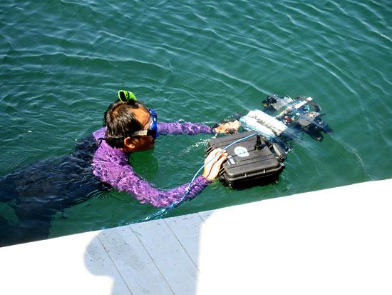 SubjuGator in the water