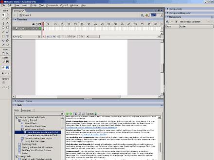 flash-2004-i1.jpg