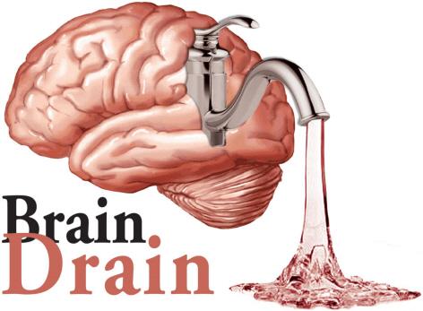 GovÂ't failures: Engineering brain drain and bad leadership