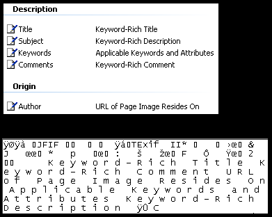 Image Metadata Properties and Text