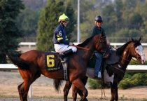 Mutak with lead pony from Louisville Thoroughbred Club