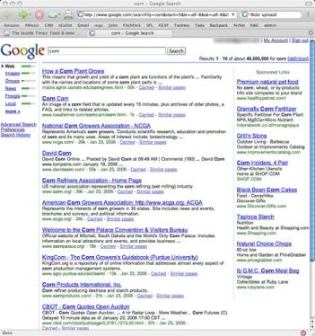 google-search-2006.jpg