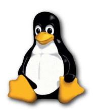 linux-penguin.JPG
