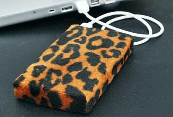 Leopard hard drive