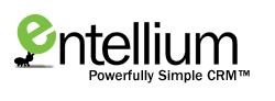 Entellium puts a video game spin on CRM with a desktop RIA