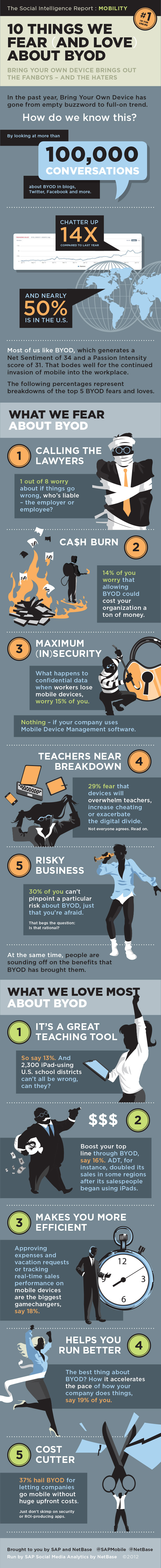 SAP NetBase BYOD Top Fears Loves Infographic R3