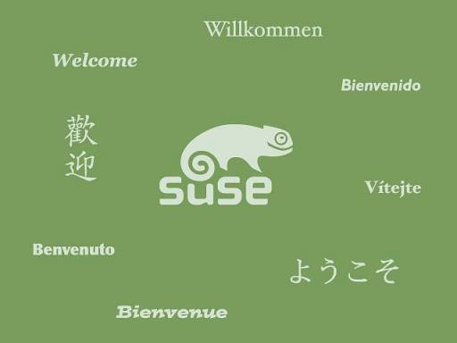 SUSE gets started