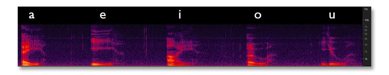 03-spectrogram-vowels.jpg