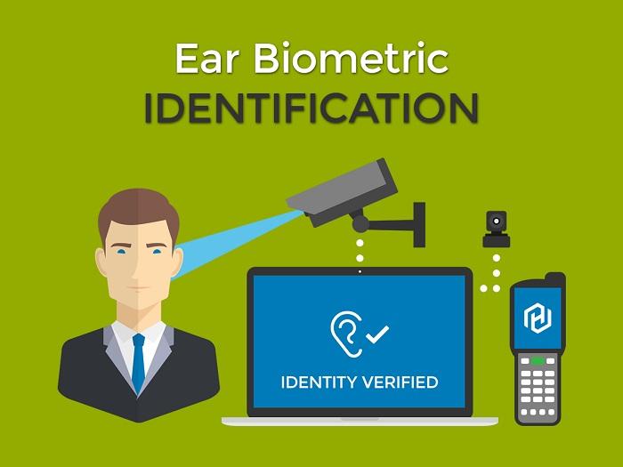 Ear identification