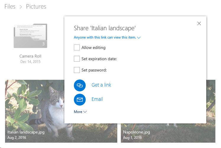 onedrive-more-sharing-options.jpg