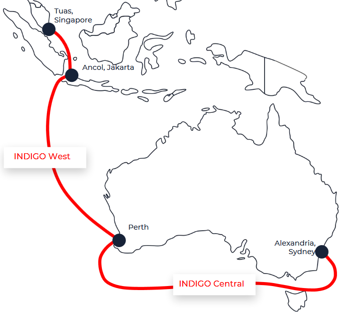 indigo-subsea-cable.png