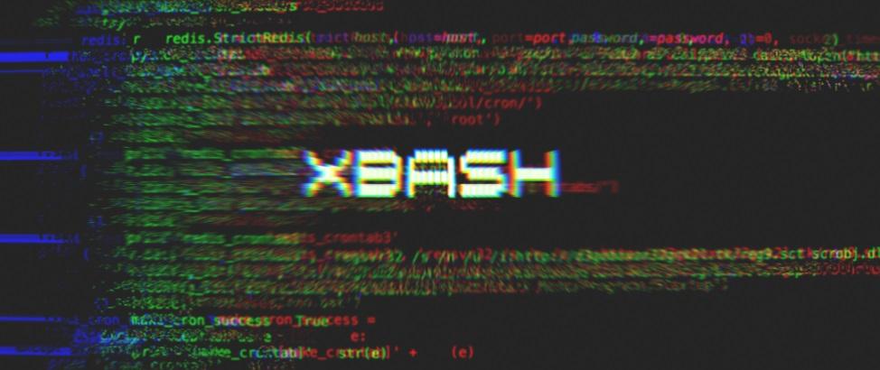 xbash.jpg