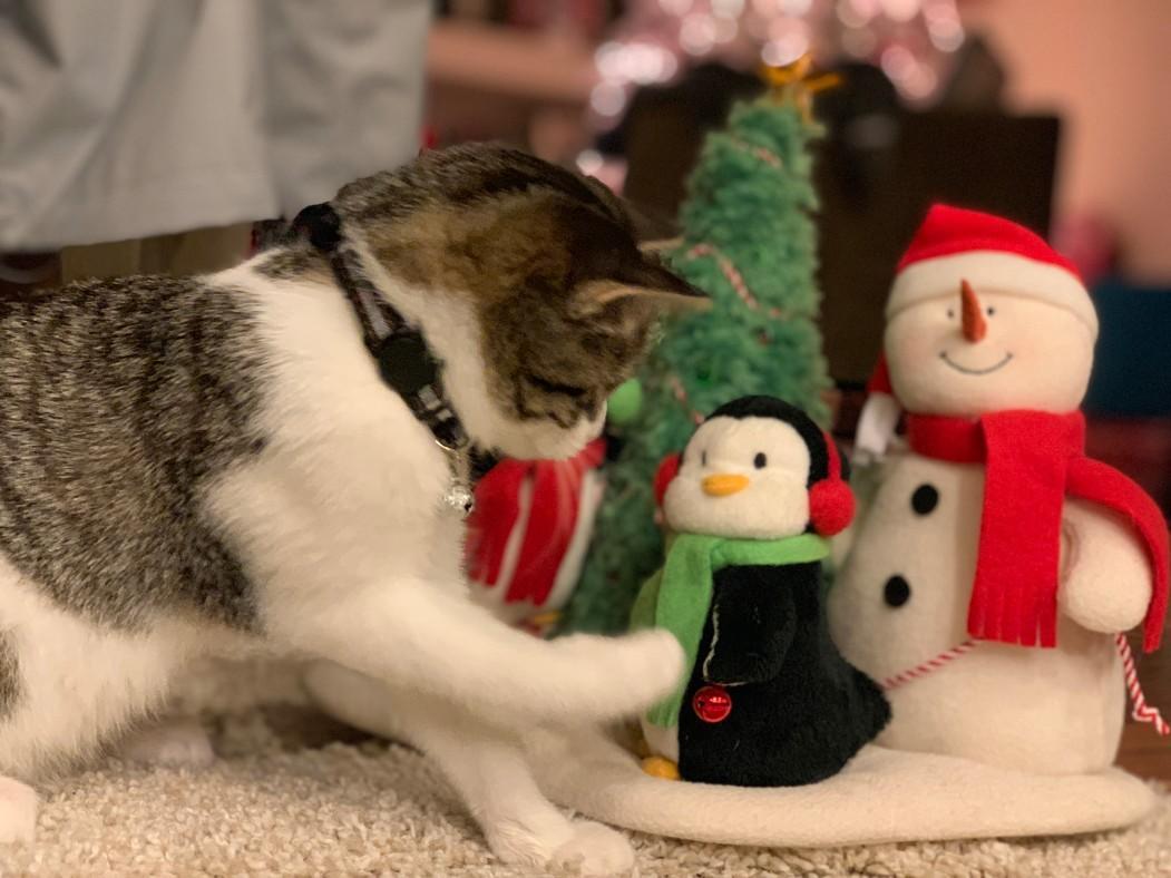 louise-christmas-penguin.jpg