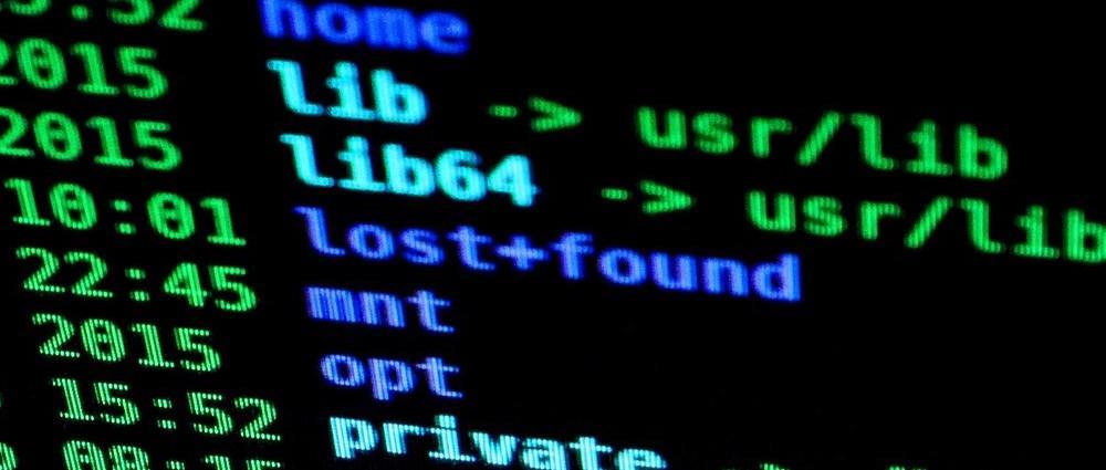 Code Linux binary