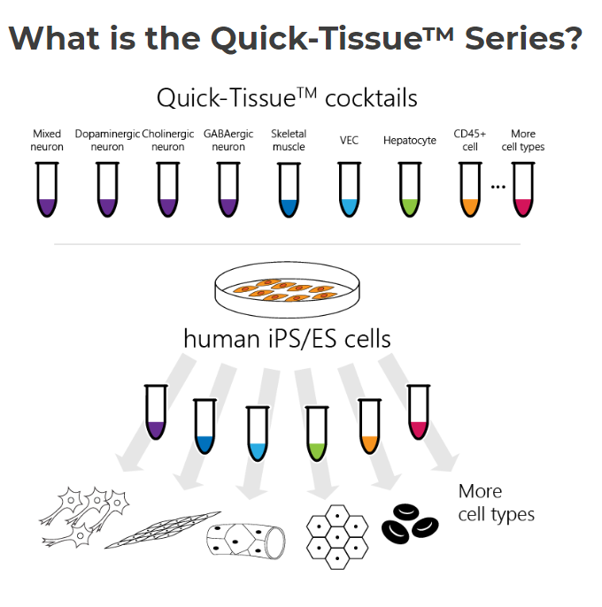 quick-tissue-overview.png