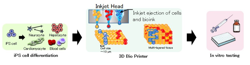 ricoh-bioprinting-overview.png