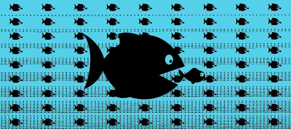 fish-eat-other-fish.png
