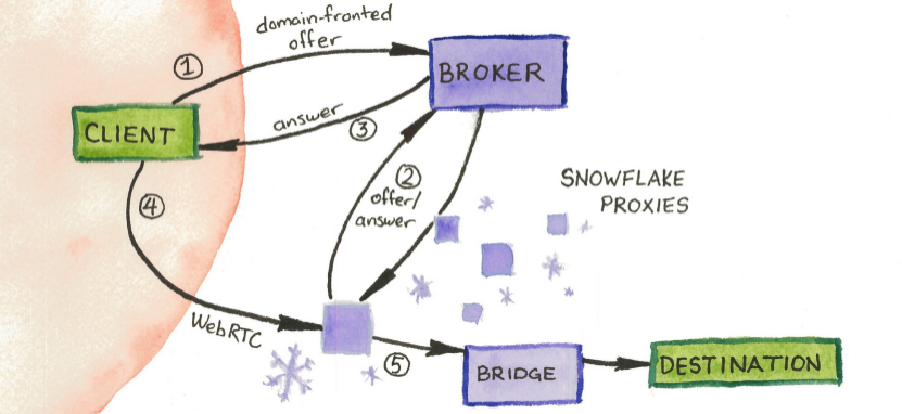 tor-snowflake-schematic.png