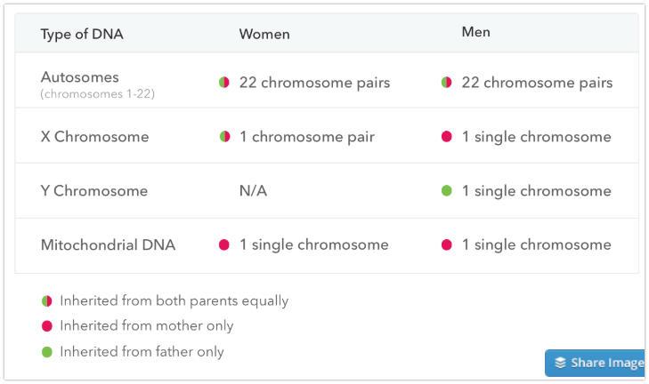 23andme-test-types.jpg