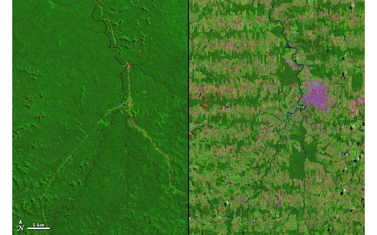 landsat-rondonia.jpg