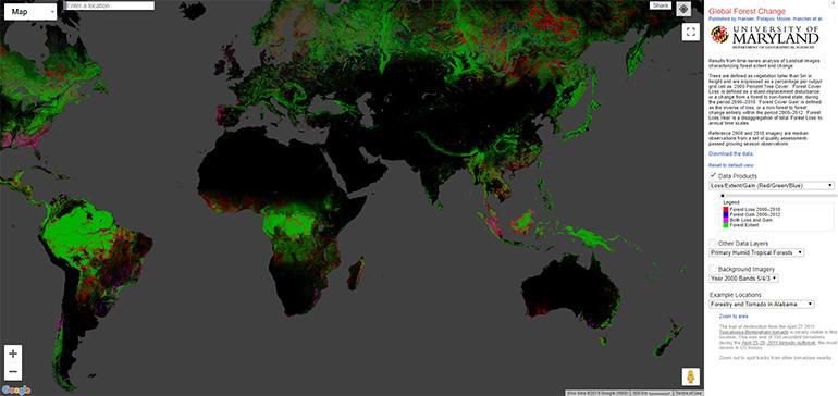 global-forest-change-uni-of-maryland.jpg