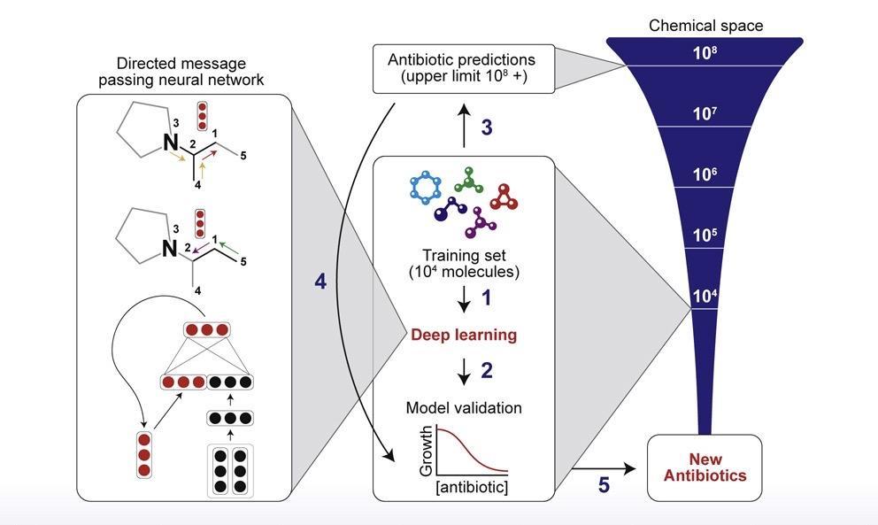 mit-molecular-modeling-training-process-march-2020.jpg