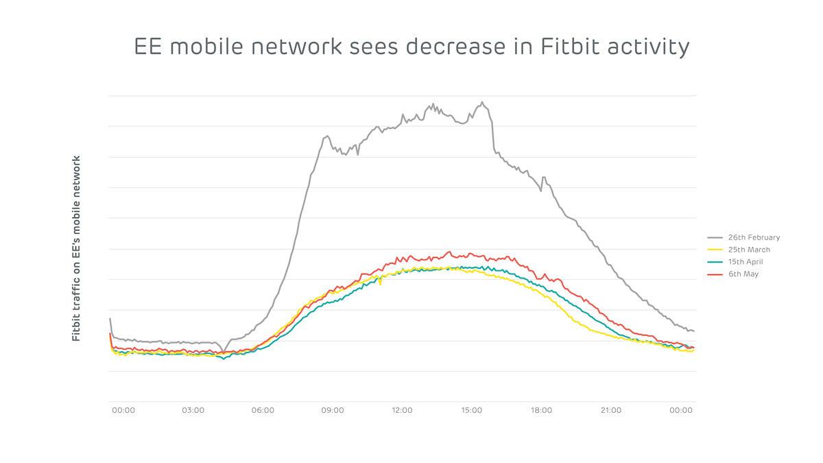 ee-graphs-fitbit.jpg