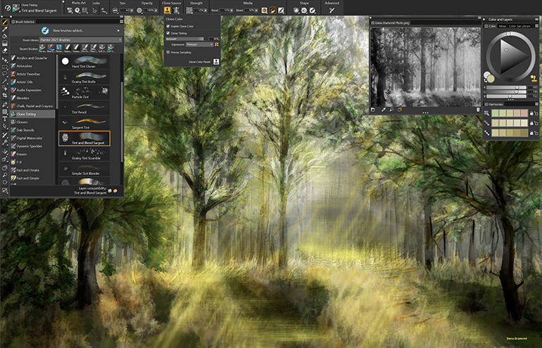 painter-2021-clone-tinting.jpg