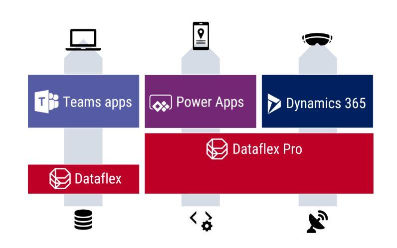 dataflex.jpg