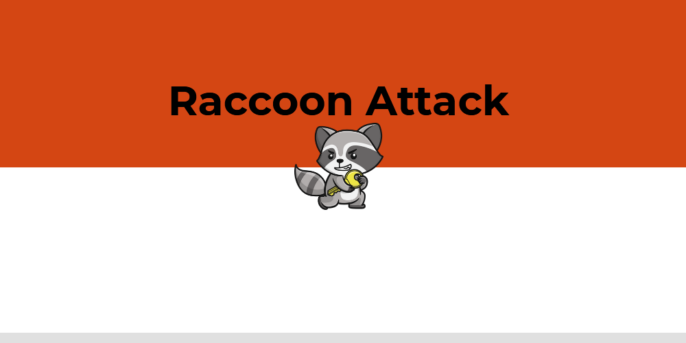 Racoon Attack