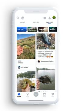 Users are flocking to Social+ networks like Fishbrain and away from Facebook and Twitter zdnet