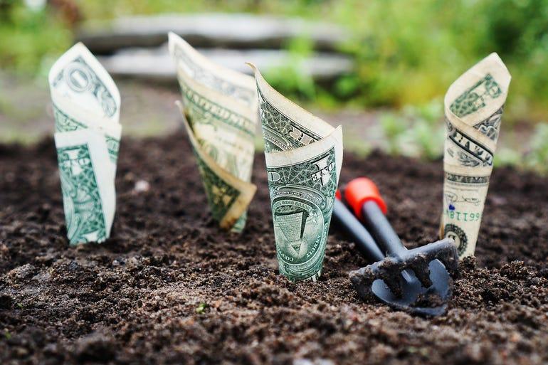 money-thedigitalway.jpg