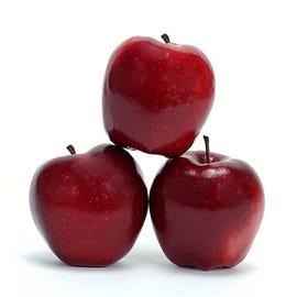 Apple Mac, iPod sales see slight rebound in December