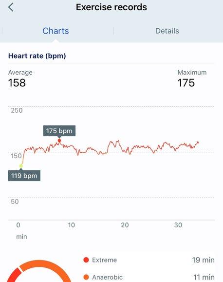 Heart rate during a short run