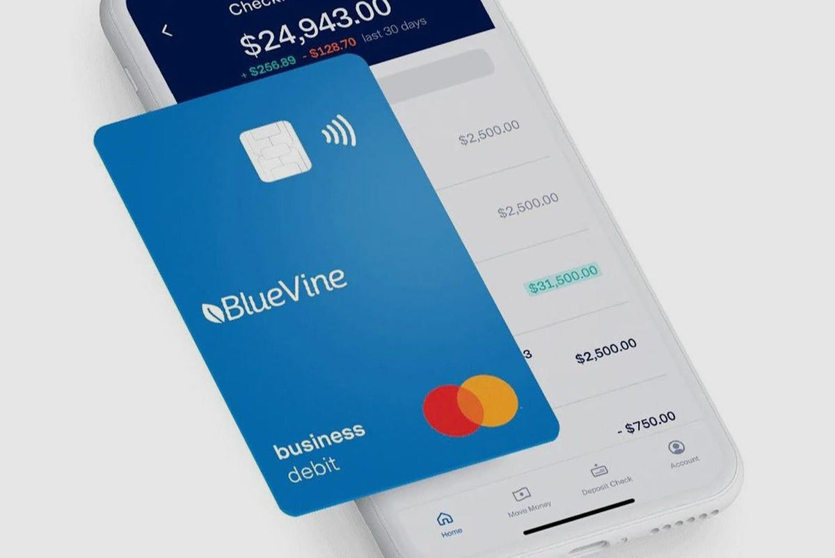 best-online-business-bank-account-bluevine.jpg