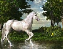 Wanted: Big data unicorns to wrangle unruly data