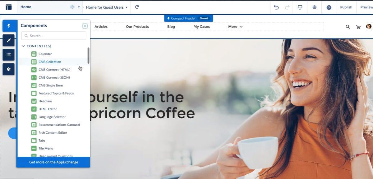 salesforce-cms-screen-4-widget-type.png