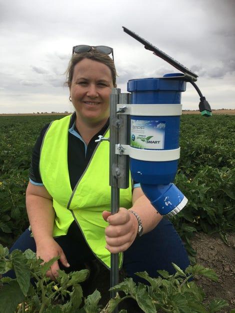 csiros-dr-rose-brodrick-with-a-prototype-waterwise-sensor-in-tomatoes.jpg