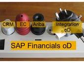 SAP Financials OnDemand: will it blend?