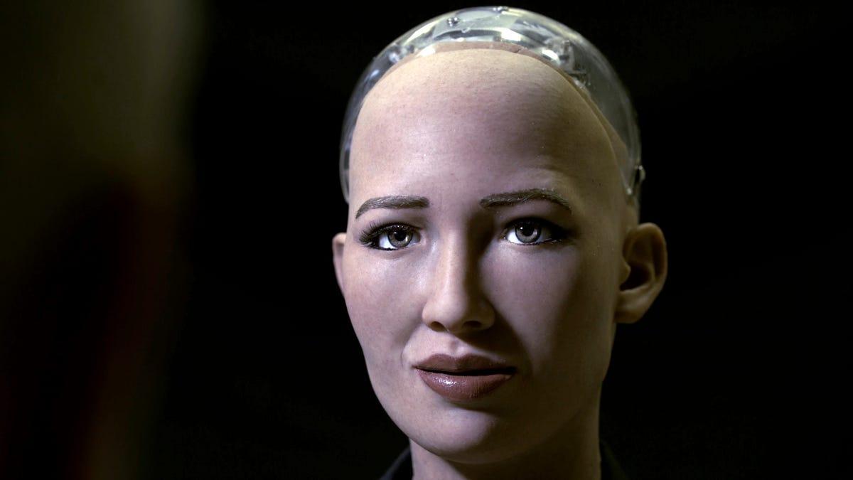 Sophia humanoid face