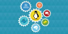 What is DevOps? An executive guide to agile development and IT operations