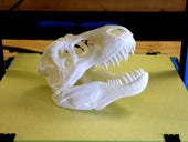 Back to school: We test inexpensive 3D printers for students of all ages